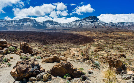 l'île de Tenerife